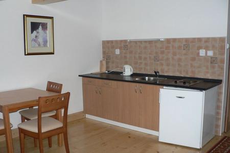 Penziony Šumava - Penzion na šumavské samotě - kuchyňka